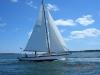 Crusing Sails